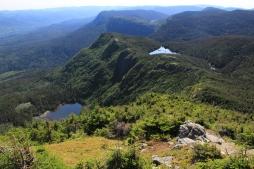 Sommet du Pic de l'Aube dans le Parc National de la Gaspésie.