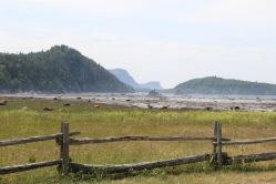 Pointe aux Épinettes à marée basse.