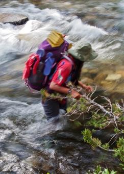 bear creek 3
