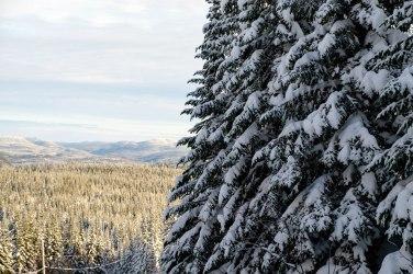 Tôt le matin, la lumière sur les montagnes est magnifique. Crédit : Mathieu Grenier