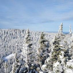 Vue au sommet de la montagne. Crédit : Mathieu Grenier