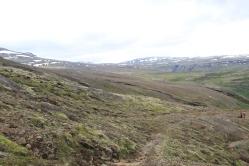 Un portion du sentier de randonnée.